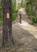 Pieni Karhunkierros trail (12km overnight loop), Oulanka NP, Finland