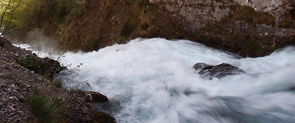 Tara tributary