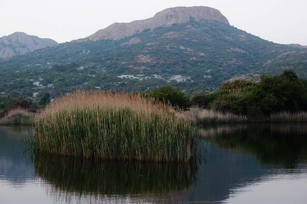 Ostriconi & Punta Liatoghiu