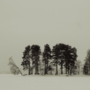 The western tip of Enonsaari island on lake Vesijärvi
