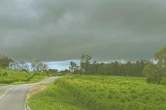Kula-Piilani Hwy ranchland