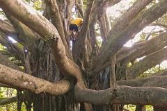 Climbing session, Pipiwai trail, Kipahulu ©Jonna