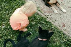 no niin, Hiili koira meet Hanibal, Aug.9th