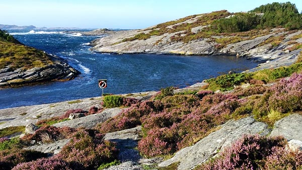 now one of my favourite swimming spots, Ormhilleren friluftslivsområde, Rongøyna island ©Jonna