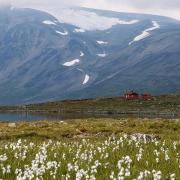 Bessvatnet & Besshøbrean glacier