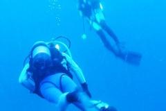 Krk & Cres underwater