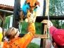 Canine Search & Rescue
