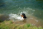 learning to swim, Rakov Škocjan
