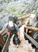 stairs to upper glacier ( Grindelwald )