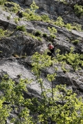 abseil no.2, Steber, IV+/III, 90m, Vipava, May 1st