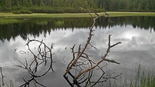 ÄŒrno jezero, June 21st