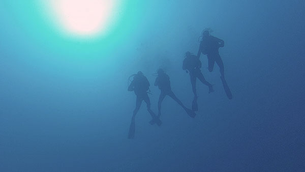 above Cesare Rossarol, group photo floating around 40m, Oct.17th. ©Uroš Jurjec