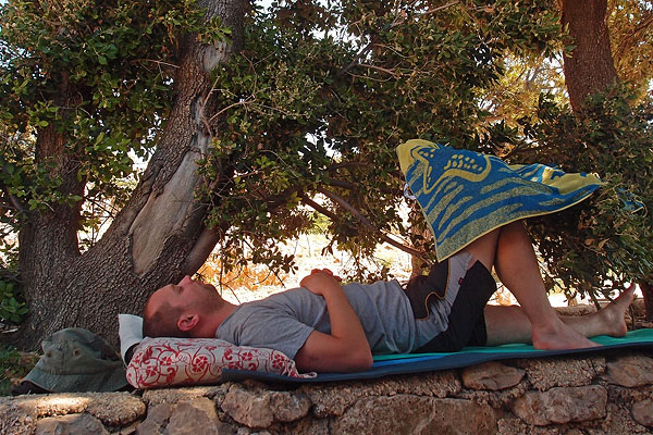 Siesta under Quercus ilex, Stara Baška, June 6th