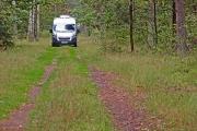 exploring forests around lake Sajno, Augustow-Poland