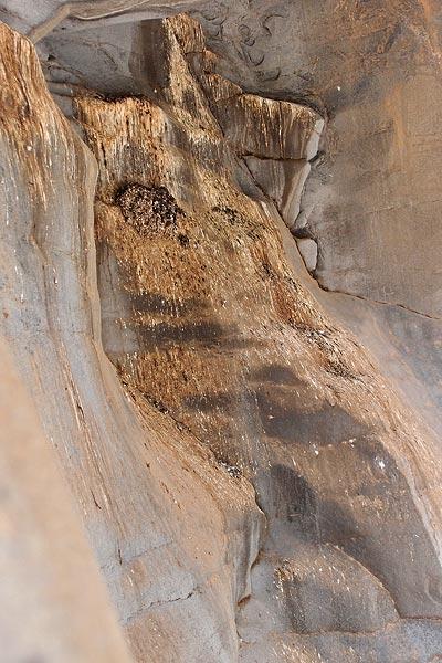 bird poo, Barranco del Piedra Bermeja, ©Jonna