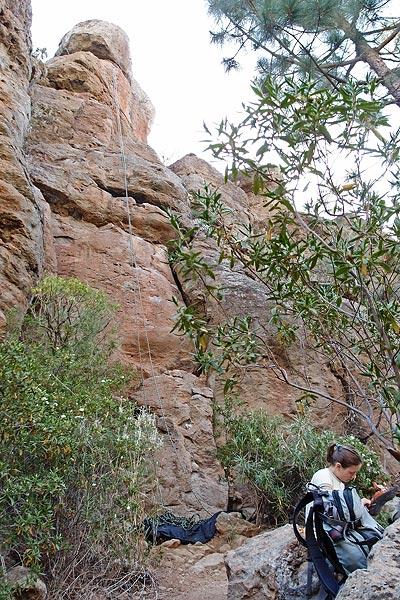 Arico arriba, probably sector Pico Vena