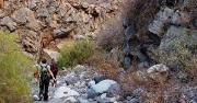 Barranco de las Hiedras, Arico Viejo