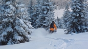 wonderful treelines @ Nockberge, ski day #6, Jan.18th