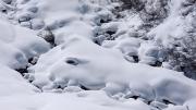 fresh pillows, Mayrhofen, Jan 31st